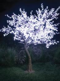Florida led lighting, Led lighting specialists www.smartledconcepts.com